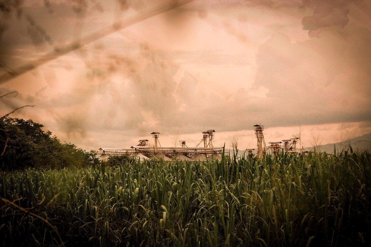 O programa de Trainee Ipiranga Agroindustrial é uma grande oportunidade de desenvolvimento de carreira na empresa que é líder em etano e açúcar no Brasil.